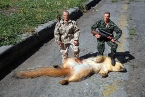 Dead-Squirrelsoldiers-300x200